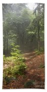 Morning In The Forest Beach Towel