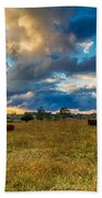 Morning On The Farm Two Beach Towel