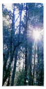 Morning Sun Rays Beach Towel