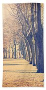 Morning Trees Beach Towel
