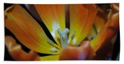 Morning Tulip Beach Towel