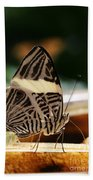 Mosaic Butterfly Beach Towel