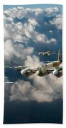 Mosquitos Above Clouds Beach Towel