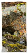 Moss And Lichens In The Scottish Highlands Beach Towel