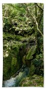 Moss And Stones By The Turquoise Forest Pond On A Summer Day No4 Beach Towel
