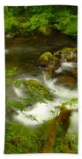 Moss Covered Trees Foregound Eagle Creek Beach Towel
