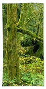 Moss Draped Big Leaf Maple California Beach Towel