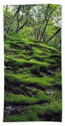 Moss Forest In Kyoto Japan Beach Towel
