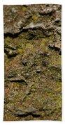 Moss On Rock Beach Towel