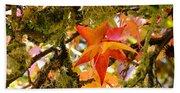 Mossy Lichen Tree Leaves Art Prints Autumn Beach Towel