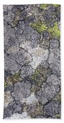 Mossy Mouldy Rock Texture Beach Towel