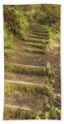 Mossy Path Beach Towel