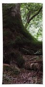 Mossy Roots Beach Towel