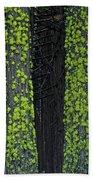 Mossy Sentinels Beach Towel