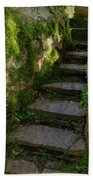 Mossy Steps Beach Towel by Carla Parris