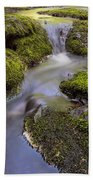 Mossy Stream Beach Towel