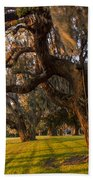 Mossy Trees At Sunset Beach Towel