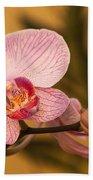Moth Orchid Beach Towel