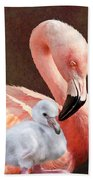 Mother And Baby Flamingo Beach Towel