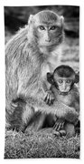 Mother And Baby Monkey Black And White Beach Towel