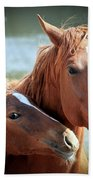 Mother And Filly Beach Towel