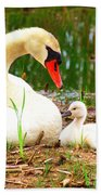 Mother Swan And Baby Beach Towel