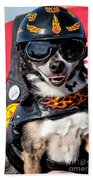 Motorcycle Chihuahua Beach Towel