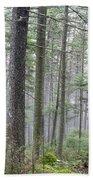 Mount Jim - Kinsman Notch New Hampshire Beach Towel