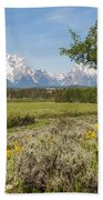 Mount Moran View Beach Towel by Brian Harig