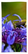 Mountain Cornflower And Bumble Bee Beach Towel by Byron Varvarigos