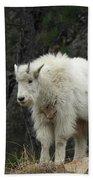 Mountain Goat Kid Beach Towel