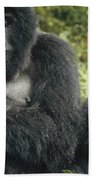 Mountain Gorilla Mother And Baby Beach Towel