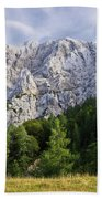 Mountain Scene Beach Towel