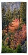 Mountain Side Colors Beach Towel