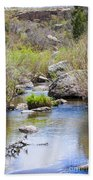 Mountain Stream In Castlewood Canyon State Park Beach Towel