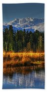 Mountain Vista Beach Towel by Randy Hall