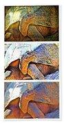 Mr. Tortoise Vertical Triptych Beach Towel