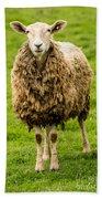 Mt Angel Abbey Sheep - Oregon Beach Towel
