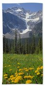 1m3613-mt. Patterson And The Snowbird Glacier Beach Towel