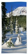 Mt Rainier At Reflection Lakes In Winter Beach Towel