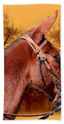 Mule Days - Westmoreland Tn  9-28-13 Beach Towel