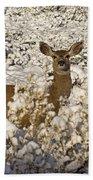 Mule Deer   #0061 Beach Towel