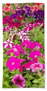 Multi-colored Blooming Petunias Background Beach Towel