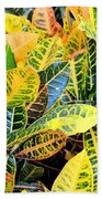 Multi-colored Croton Beach Towel