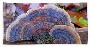Multicolor Mushroom Beach Towel
