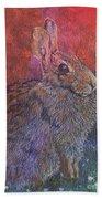 Munching On Clover Beach Towel by Sari Sauls