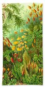Muscinae Beach Towel
