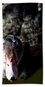 Muscovy 14-2 Beach Towel