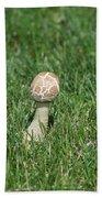 Mushroom 01 Beach Towel