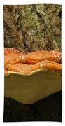 Mushroom Plate Beach Towel